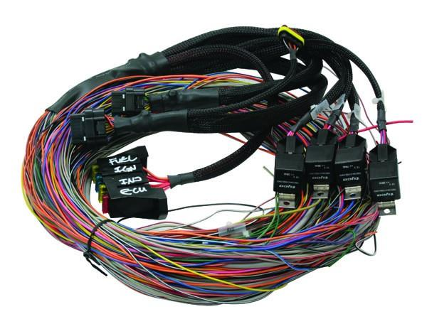 2451170d 0e9c 4ac8 b6e7 83dbafe60481 800 ht 041302 haltech engine harness universal wire in moore haltech fuse box at edmiracle.co
