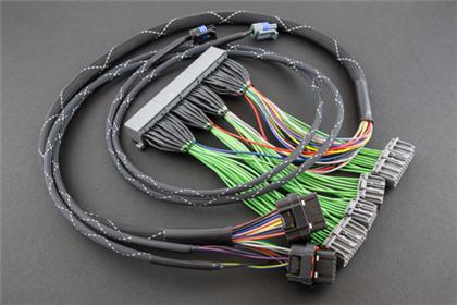 BF25130-2500 - Boomslang Plug n Play Harness - Haltech Elite